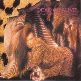 Sophisticated Boom Boom - Dead Or Alive