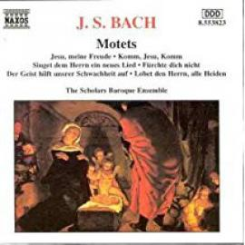 Motets - Johann Sebastian Bach