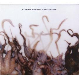 Obscurities - Stephin Merritt