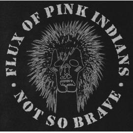 Not So Brave - Flux Of Pink Indians