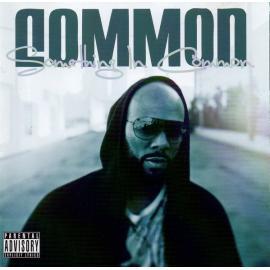 Something In Common - Common