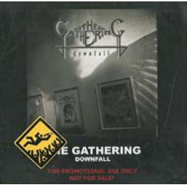 Downfall - The Gathering