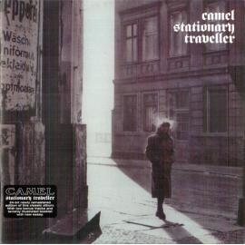 Stationary Traveller - Camel