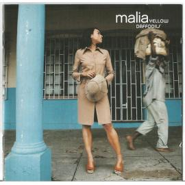 Yellow Daffodils - Malia