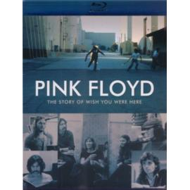 The Story Of Wish You Were Here - Pink Floyd