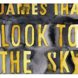Look To The Sky - James Iha