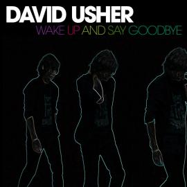 Wake Up And Say Goodbye - David Usher