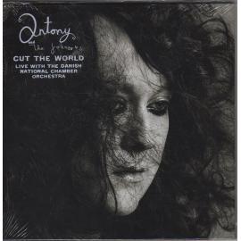 Cut The World - Antony And The Johnsons