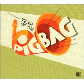 Year Of The Pigbag - Pigbag