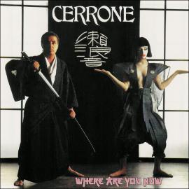 Where Are You Now - Cerrone