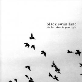 The Last Time In Your Light - Black Swan Lane