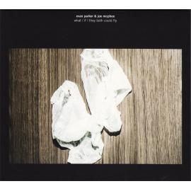 What / If / They Both Could Fly - Evan Parker