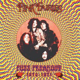 Fuzz Freakout 1970-1971 - The Pink Fairies