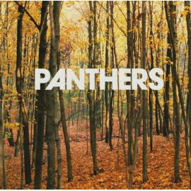 Things Are Strange - Panthers