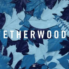 Blue Leaves - Etherwood