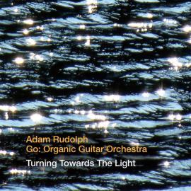 Turning Towards The Light  - Adam Rudolph