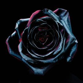 Change Colours  - Reece Mastin