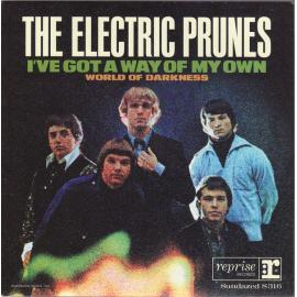 I've Got A Way Of My Own - The Electric Prunes