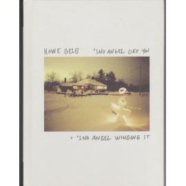 'Sno Angel Like You + 'Sno Angel Winging It (Live) CD + DVD - Howe Gelb