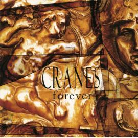 Forever - Cranes