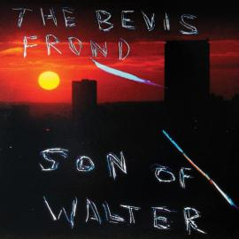 Son Of Walter - The Bevis Frond