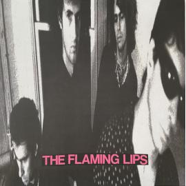 In A Priest Driven Ambulance - The Flaming Lips