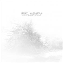 In The Fields Of Nothing - Kenneth James Gibson