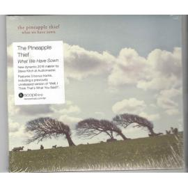 What We Have Sown - The Pineapple Thief