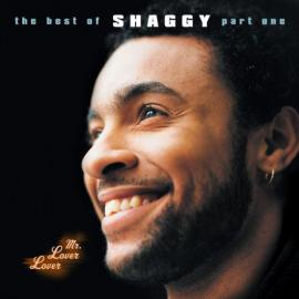 Mr. Lover Lover (The Best Of Shaggy... Part 1) - Shaggy