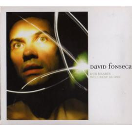 Our Hearts Will Beat As One - David Fonseca