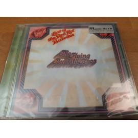 The Last Of The Red Hot Burritos - The Flying Burrito Bros