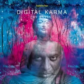 Digital Karma - Ravin