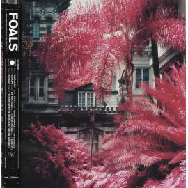 Everything Not Saved Will Be Lost : Part 1 - Foals