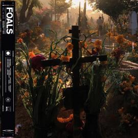 Everything Not Saved Will Be Lost: Part 2 - Foals
