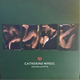 Adam And Eve - Catherine Wheel