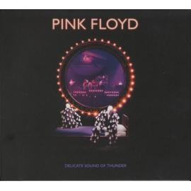 Delicate Sound Of Thunder - Pink Floyd