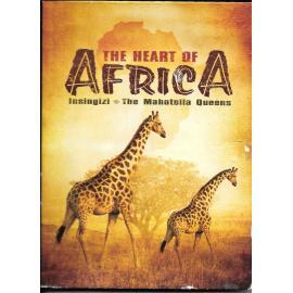 HEART OF AFRICA - Insingizi