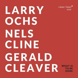 What Is To Be Done - Larry Ochs