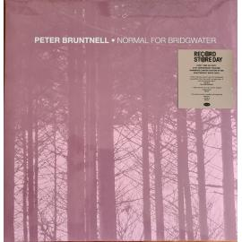 Normal For Bridgwater - Peter Bruntnell