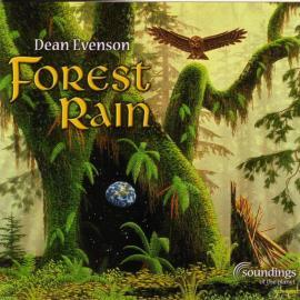 Forest Rain - Dean Evenson