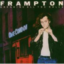 Breaking All The Rules - Peter Frampton