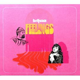 Feelings - Brijean Murphy
