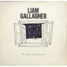 All You're Dreaming Of... - Liam Gallagher
