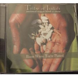 Bloom Where Your Planted  - Tribe Of Judah Anointed Reggae Band