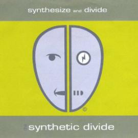 Synthesize And Divide - The Synthetic Divide
