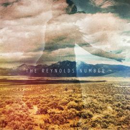 The Reynolds Number - The Reynolds Number