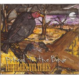 Picked To The Bone - The Blues Vultures