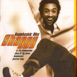 Boombastic Hits - Shaggy