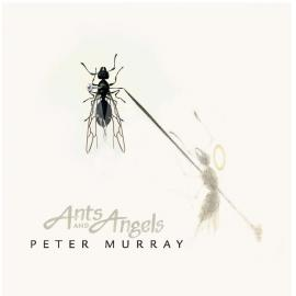 Ants and Angels - Peter Murray
