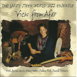 View From Afar - The Larry Steen World Jazz Ensemble